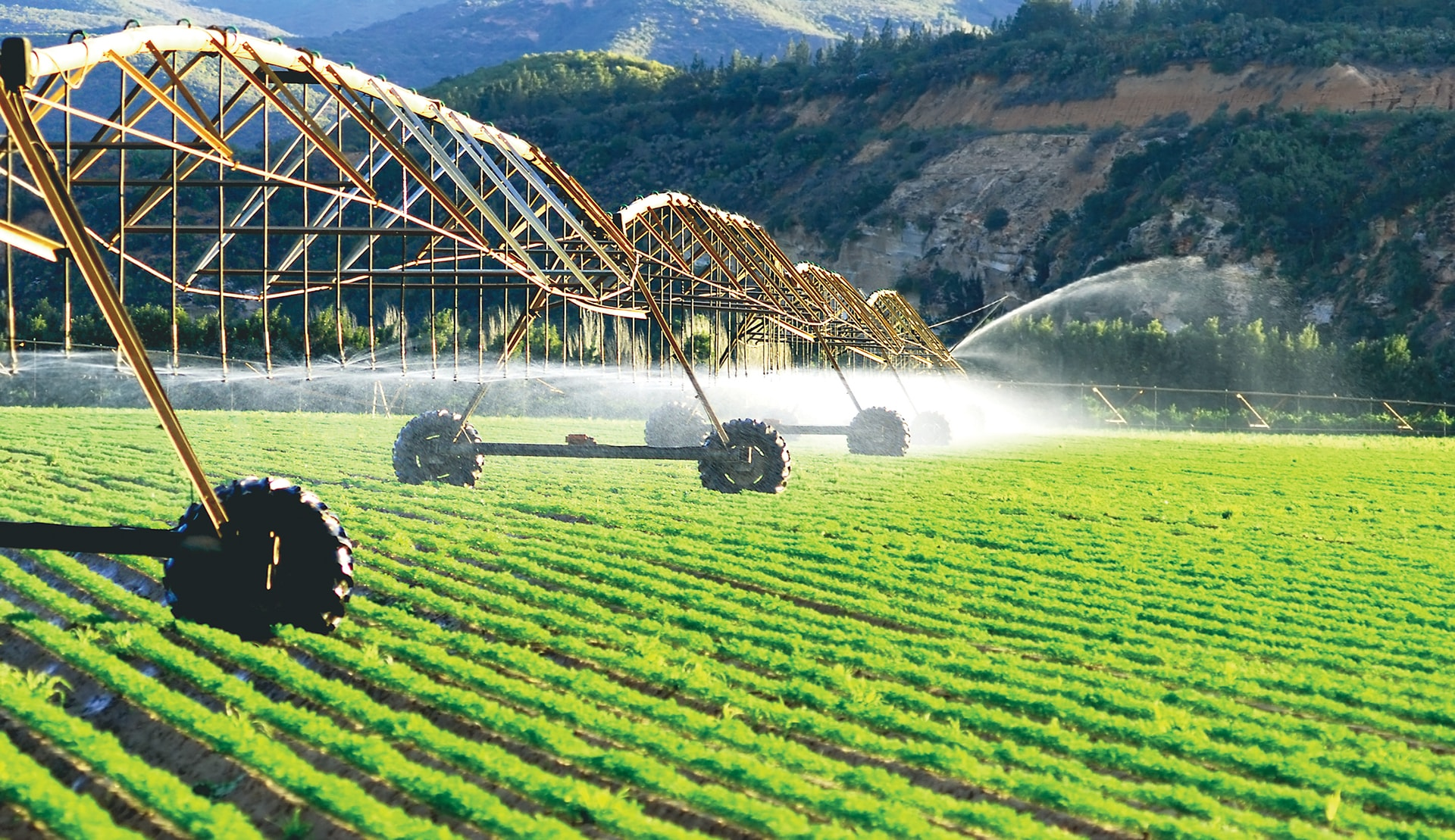 Irrigated systems -min